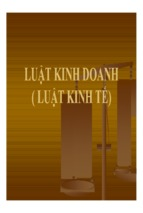 Luật kinh doanh   luật kinh tế ( www.sites.google.com/site/thuvientailieuvip )